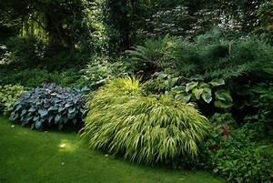 Pflanzen Für Schattengarten : schattengarten mit japanwaldgras und hostas garten pinterest schattengarten g rten und ~ Sanjose-hotels-ca.com Haus und Dekorationen