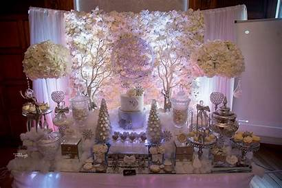 Shower Bridal Winter Wonderland Themed Party Mojisola