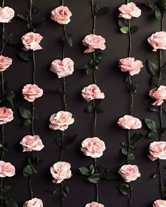 Pink Rose Pattern Pictures, Photos, and Images for ...