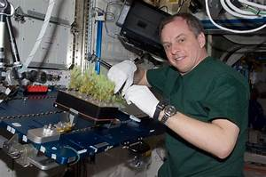International Space Station Science Project - Pics about space