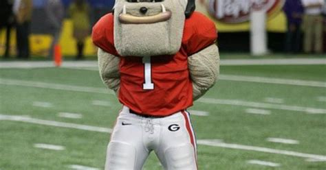 Georgia Bulldogs Mascot Hairy Dawg Takes In The Action At