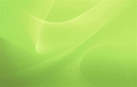 wallpaper green colour gallery