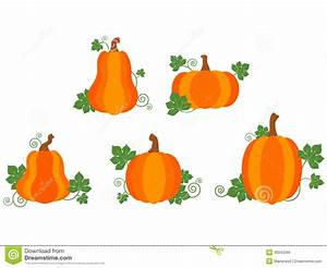 Pumpkin Patch Clipart for Free – 101 Clip Art