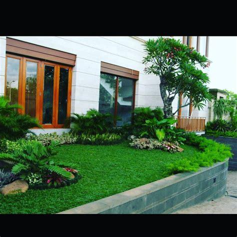 desain taman minimalis belakang rumah sobat interior rumah