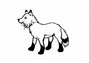 free coloring pages With arctic fox diagram