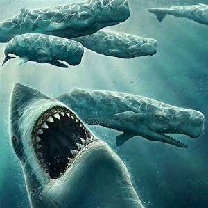 Top 10 Terrifying Prehistoric Sea Monsters | Megalodon ...