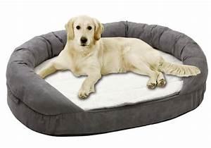 coussin pour chien coussin orthobed With tapis de couloir avec housse de canapé pour chien
