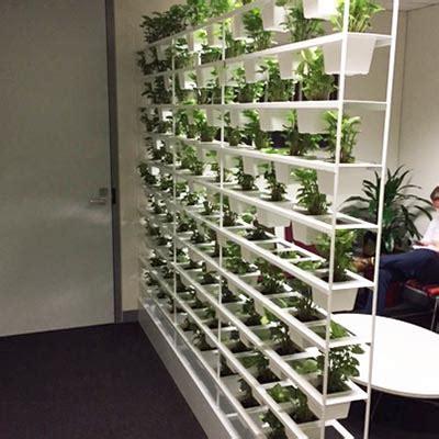 pot plant vertical garden wall flexible green spaces