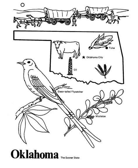 oklahoma state outline coloring page  worksheets