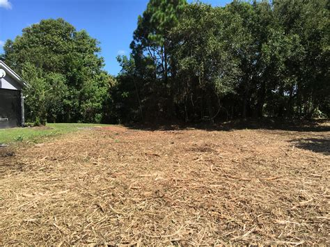 land clearing land clearing forestry mulching services