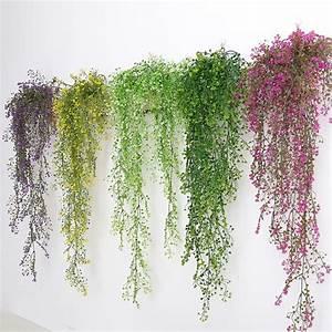 Pflanzen An Der Wand : click to enlarge ~ Markanthonyermac.com Haus und Dekorationen