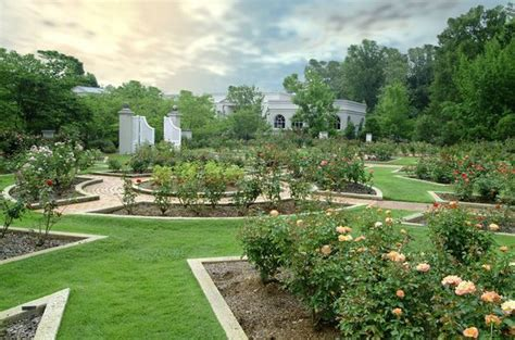 olive garden birmingham al how birmingham botanical gardens is combating the drought