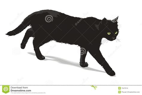 Katzen Design Möbel by Lopende Zwarte Vector Illustratie Illustratie