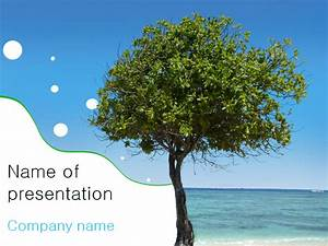 Download Free Sea Tree Powerpoint Template For Presentation
