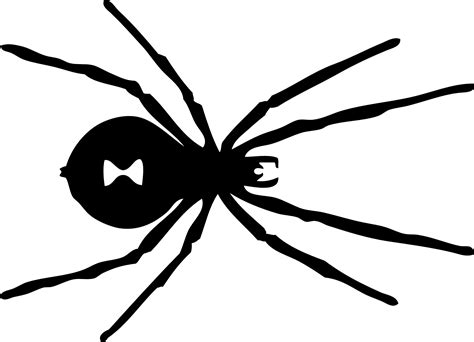 Spider Clipart Black And White Wallpapers Gallery