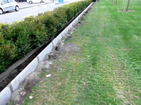bordure jardin beton pose de bordures par http www artisan paysagiste fr