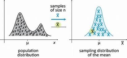 Distribution Sampling Sample Population Mean Means Limit