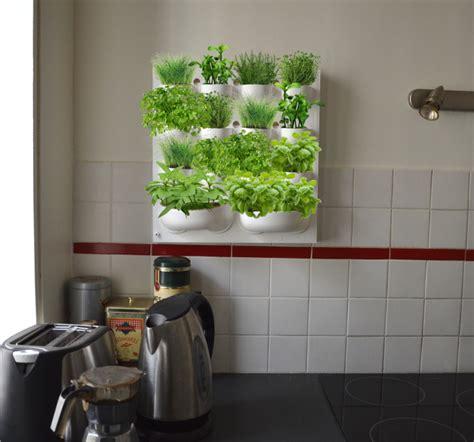 herbes aromatiques cuisine jardinage intérieur fr le retrouvez tous nos