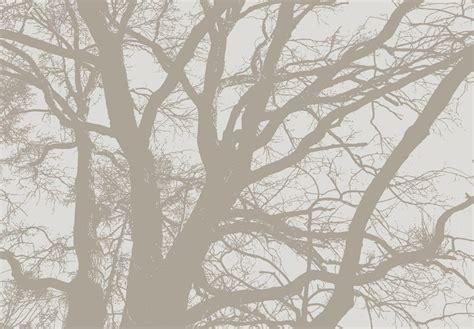 chambre noir et gris spécialiste français arbre asie salon chambre