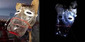 Laternen Aus Flaschen : laternen basteln mit kindern hoppe hoppe pet flaschen reiter ~ A.2002-acura-tl-radio.info Haus und Dekorationen