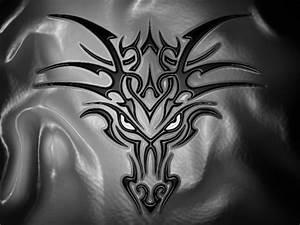 Drachen Schwarz Weiß : drachen und andere fabelwesen bilder tattoos geschichten ~ Orissabook.com Haus und Dekorationen