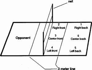 The Spike Approach : The Court of the Sport