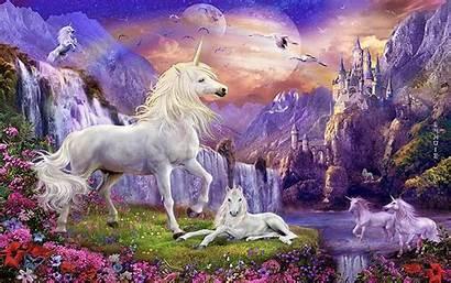 Unicorn Unicorns Fantasy Wallpapers Waterfalls Castles Backgrounds