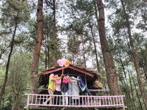 rumah pohon kembang langit wisata populer   batang