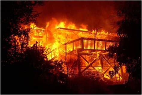 park    prescribed fire santa monica