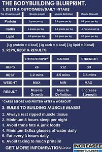 How To Build Muscle  The Complete Bodybuilding Guide To Improve Muscle Growth