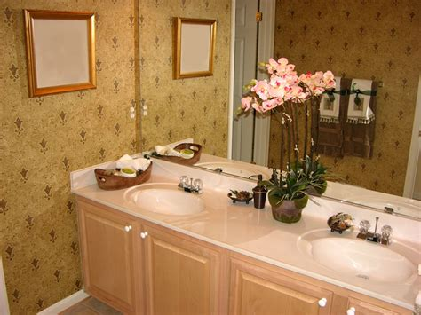 Small Plants For The Bathroom by Caring For Indoor Plants Simple Tips Lorenz S Ok Seeds