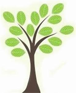 Bois De Chauffage Gratuit : affouage du bois de chauffage gratuit ou presque ~ Melissatoandfro.com Idées de Décoration