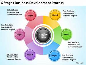 Business Management Structure Diagram 6 Stages Development