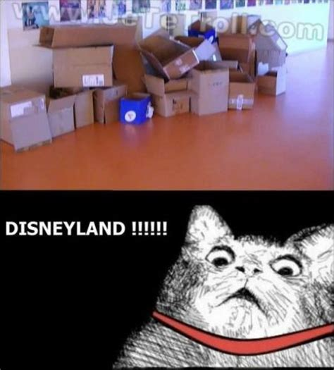 Disney Land Meme - 15 cat disneyland meme pmslweb