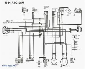Wiring Diagram For Honda 125m
