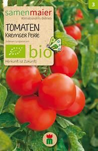 Kürbis Gute Nachbarn : bio tomaten 39 kremser perle 39 ~ Whattoseeinmadrid.com Haus und Dekorationen