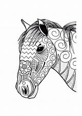 Coloring Horse Adult Ornamental Head sketch template