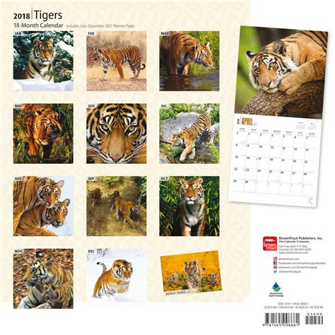 tigers calendars ukposterseuroposters