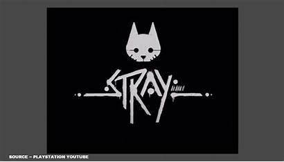 Stray Ps5 Release Date Far Know Trailer
