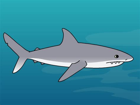 Shark Image Tiburones Lesson Plans And Lesson Ideas Brainpop Maestros
