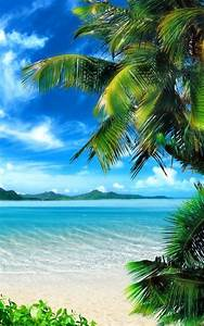 Tropical Beach Live Wallpaper App Ranking and Store Data ...