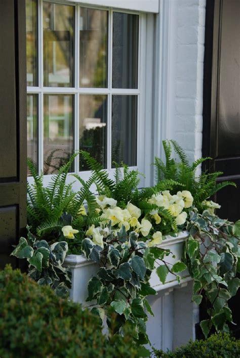 gorgeous window box ideas  spring