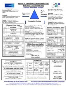 Pediatric Assessment Guide