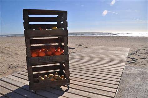unique diy wooden pallet vegetable organizers pallets designs