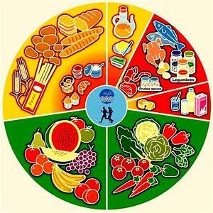 Alimentos nutritivos y no nutritivos - Recursos didcticos