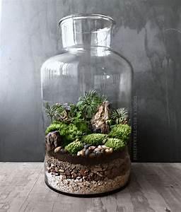 Terrarium Plante Deco : un vrai paysage miniature pour cet imposant terrarium ~ Dode.kayakingforconservation.com Idées de Décoration