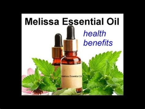 melissa essential oil health benefits youtube