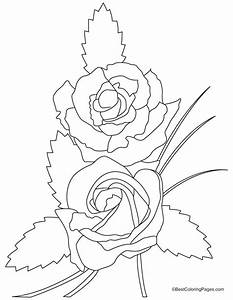 Free coloring pages of easy rose