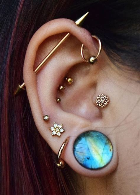 industrial spike collection  conch piercings body