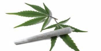 Le Pour Cannabis by Alcool Et Cannabis Le Foie Parle 224 Vos Ados